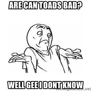 Wala talaga eh - Are can toads bad? well gee i dont know