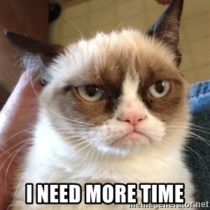 Grumpy Cat 2 - I need more time