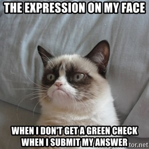 Grumpy cat good - The Expression On My Face When I don't get a Green Check when I submit my answer