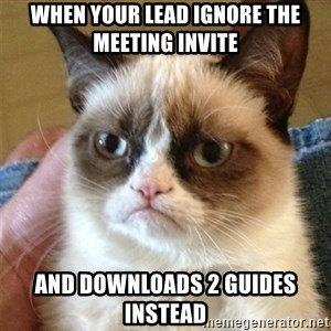 Grumpy Cat  - When Your Lead Ignore The Meeting Invite And Downloads 2 Guides Instead