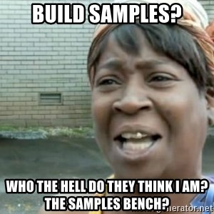 Xbox one aint nobody got time for that shit. - Build Samples? Who the hell do they think I am? The Samples Bench?