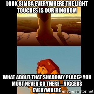 Lion King Shadowy Place - Look Simba everywhere the light touches is our kingdom What about that shadowy place? You must never go there ...Niggers everywhere