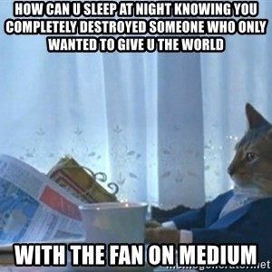 newspaper cat realization - How can u sleep at night knowing you completely destroyed someone who only wanted to give u the world  With the fan on medium