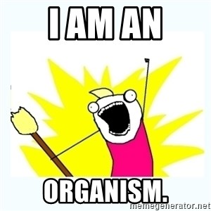 All the things - I am an Organism.