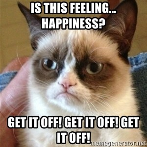 Grumpy Cat  - Is this feeling... happiness? Get it off! Get it off! Get it off!