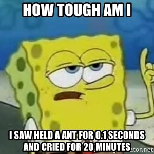 Tough Spongebob - how tough am i i saw held a ant for 0.1 seconds and cried for 20 minutes
