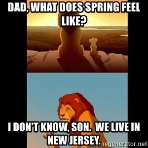 Lion King Shadowy Place - Dad, what does Spring feel like? I don't know, Son.  We live in New Jersey.