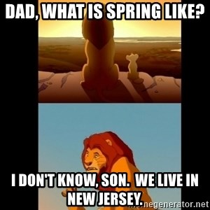 Lion King Shadowy Place - Dad, what is Spring like? I don't know, Son.  We live in New Jersey.