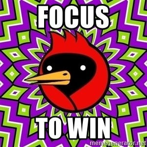 Omsk Crow - Focus to win