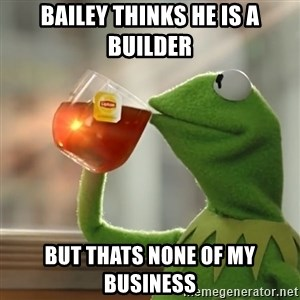 Kermit The Frog Drinking Tea - Bailey thinks he is a BUILDER  but thats none of my business