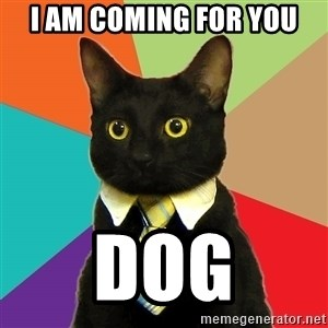 Business Cat - i am coming for you dog
