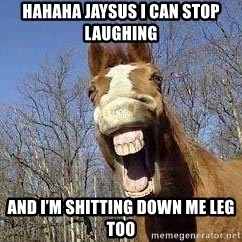 Horse - Hahaha jaysus I can stop laughing And I'm shitting down me leg too
