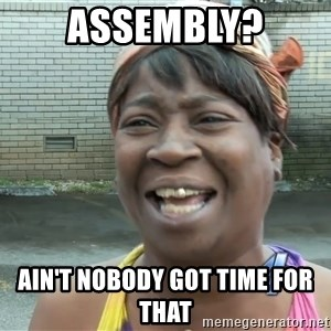Ain`t nobody got time fot dat - Assembly? Ain't nobody got time for that
