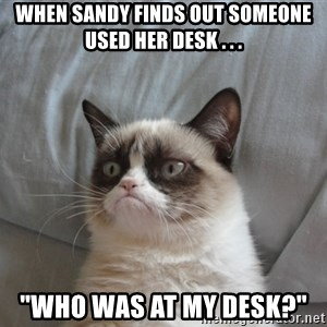 "Grumpy cat good - When Sandy finds out someone used her desk . . . ""Who was at my desk?"""