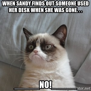 Grumpy cat good - When Sandy finds out someone used her desk when she was gone. . . _____NO!_____