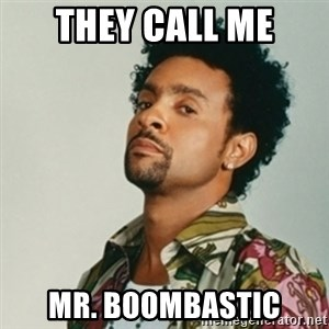 Shaggy. It wasn't me - They call me mr. boombastic