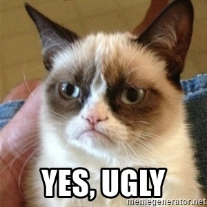 Grumpy Cat  - Yes, ugly