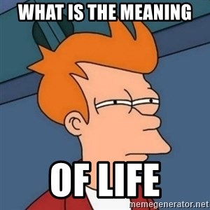 Not sure if troll - what is the meaning  of life