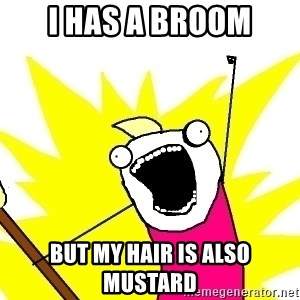 X ALL THE THINGS - I HAS A BROOM BUT MY HAIR IS ALSO MUSTARD