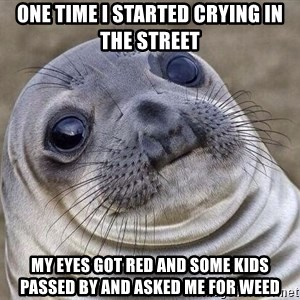 Awkward Seal - One time I started crying in the street My eyes got red and some kids passed by and asked me for weed