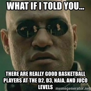 Nikko Morpheus - WHAT IF I TOLD YOU... There are really good basketball players at the D2, D3, NAIA, and JUCO levels