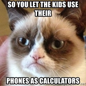 Angry Cat Meme - so you let the kids use their phones as calculators