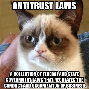 Grumpy Cat  - Antitrust laws A collection of federal and state government laws that regulates the conduct and organization of business