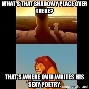 Lion King Shadowy Place - What's that shadowy place over there? That's where Ovid writes his sexy poetry.