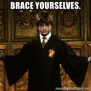 Harry Potter Come At Me Bro - Brace yourselves.