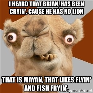 Crazy Camel lol - I heard that Brian, has been cryin', cause he has no lion that is mayan, that likes flyin' and fish fryin'.