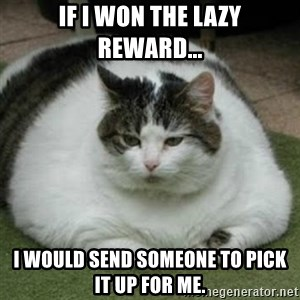 Lazy Fat Cat - if i won the lazy reward... i would send someone to pick it up for me.