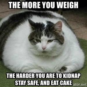 Lazy Fat Cat - the more you weigh  the harder you are to kidnap stay safe, and eat cake