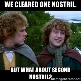 What about second breakfast? - We cleared one nostril. But what about second nostril?
