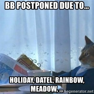 newspaper cat realization - BB postponed due to... holiday, DATel, RAINBOW, MEADOW, ...