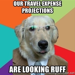 Business Dog - Our travel expense projections are looking ruff