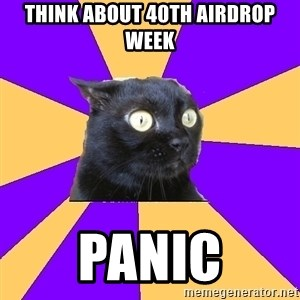 Anxiety Cat - Think about 40th airdrop week panic