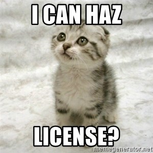 Can haz cat - i can haz license?