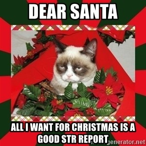 GRUMPY CAT ON CHRISTMAS - dear santa all i want for Christmas is a good STR Report