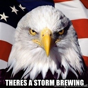American Pride Eagle - theres a storm brewing