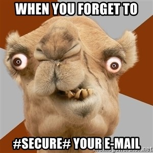 Crazy Camel lol - When you forget to  #secure# your e-mail