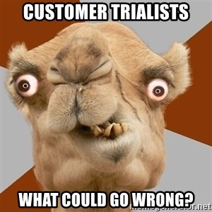 Crazy Camel lol - Customer Trialists What could go wrong?