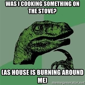 Philosoraptor - was i cooking something on the stove? (as house is burning around me)