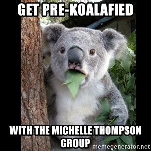 Koala can't believe it - Get Pre-koalafied With the Michelle Thompson Group