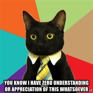 Business Cat - you know I have zero understanding or appreciation of this whatsoever
