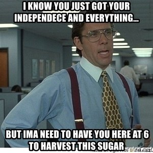 That would be great - I know you just got your independece and everything...  BUt ima need to have you here at 6 to harvest this sugar