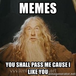 You shall not pass - Memes You shall pass me cause i like you