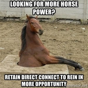 Hole Horse - Looking for more horse power? Retain Direct Connect to rein in more opportunity