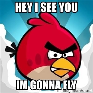 Angry Bird - hey I see you im gonna fly