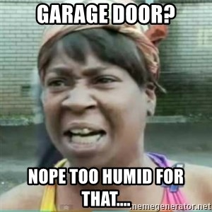 Sweet Brown Meme - Garage door? Nope too humid for that....