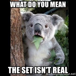 Koala can't believe it - what do you mean the set isn't real